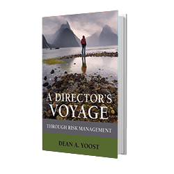 A Director's Voyage Through Risk Management