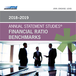 2018-19 Annual Statement Studies: Financial Ratio